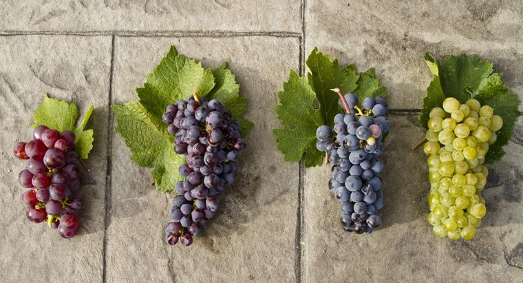 Are Green Grapes Healthier Than Red Grapes?
