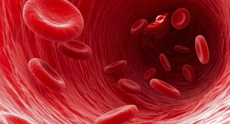 What Happens If You Have Too Many Red Blood Cells?