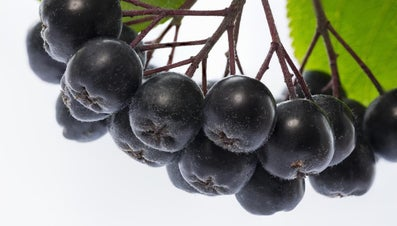What Is the Healthiest Fruit in the World?