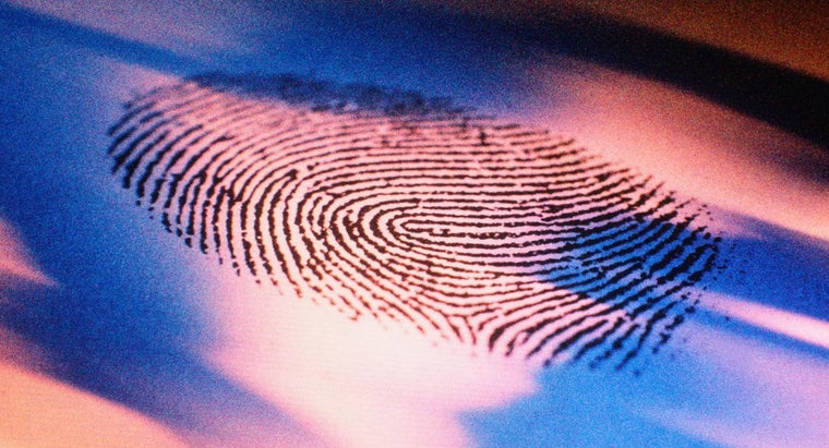 What Is the History of Fingerprinting?