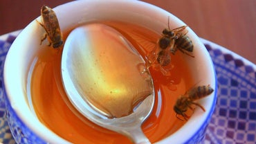 What Is the Best Honey in the World?