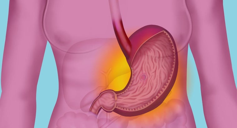 What Does Hydrochloric Acid Do in the Stomach?