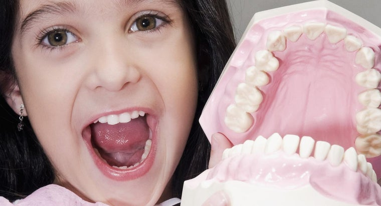 Do All Insurance Companies Offer Dental Coverage?