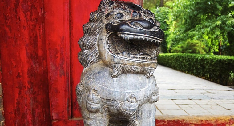 What Is a Japanese Lion Dog?