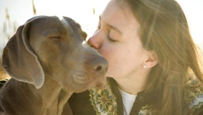 What Are Some Jobs for Animal Lovers?