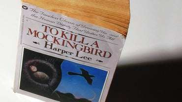 "What Does ""To Kill a Mockingbird"" Mean?"