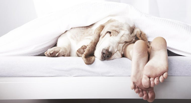 Is King Size the Largest Mattress?