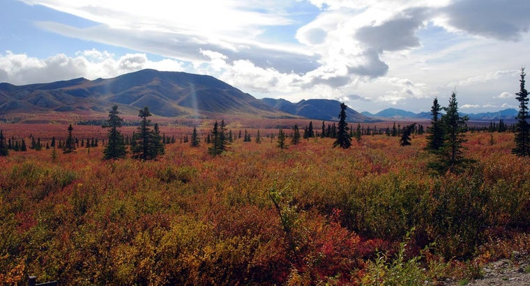 What Are the Land Forms of the Taiga?