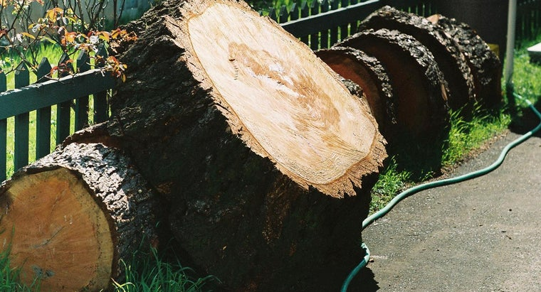 What Is Larch Wood Used For?
