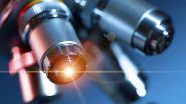What Is a Light Microscope Used For?