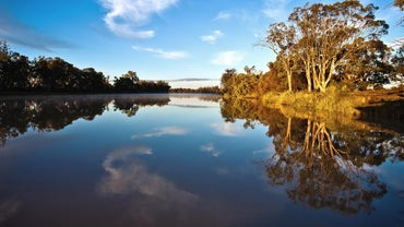 How Long Is Australia's Longest River?