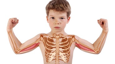 How Long Do Fractures of the Sternum Take to Heal?
