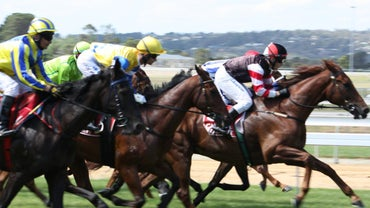 How Do Your Read Daily Racing Form Entries? | Reference com
