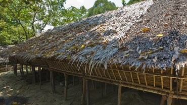 What Is a Longhouse Made Of?