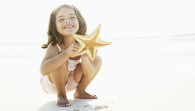 What Is the Lower Surface of a Starfish Called?