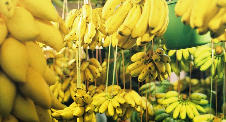How Many Bananas Are in a Pound?