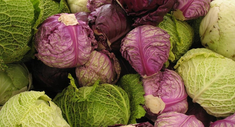 How Many Calories Are in a Cabbage?