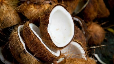 How Many Calories Does a Coconut Have?