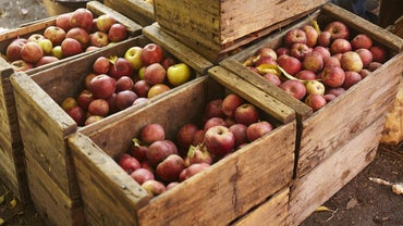 How Many Pounds Are in a Peck of Apples?