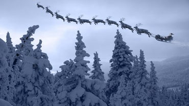 How Many Reindeer Pulled Santa's Sleigh? | Reference.com