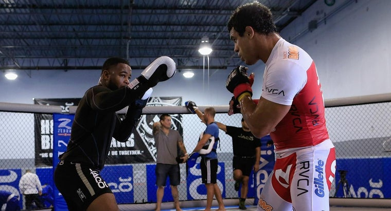 How Many Times a Day Do UFC Fighters Train?