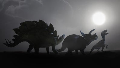How Many Types of Dinosaurs Were There?