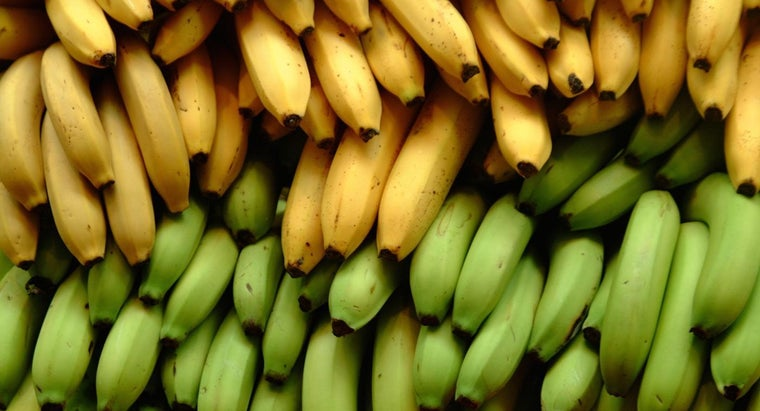 What Does It Mean If Your Potassium Levels Are Too High?