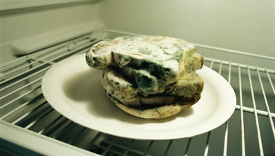 Why Does Mold Grow on Bread?