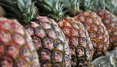 How Much Does a Pineapple Weigh?
