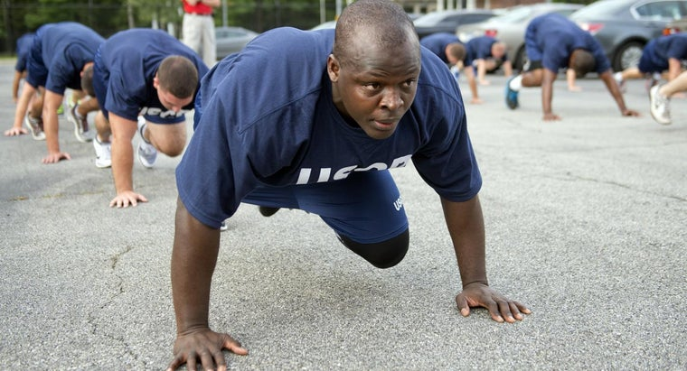 Which Muscle Region of the Body Do Push-Ups Focus On?