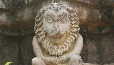 What Are Some Mythical Lion Names?