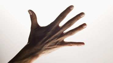 What Are the Names of the Five Fingers of the Hand?