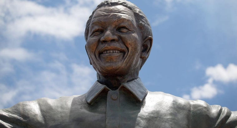 What Was Nelson Mandela Fighting For?
