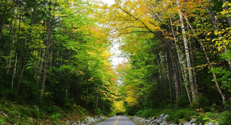 What Are New Hampshire's Natural Resources?