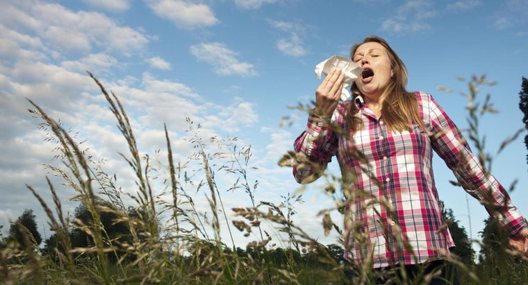 What Are Some Home Remedies for Allergies?