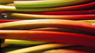 What Is the Nutritional Value of Rhubarb?
