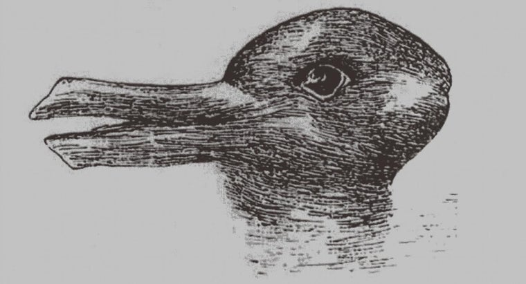 Why Do Optical Illusions Work?