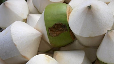 How Do You Peel a Coconut?