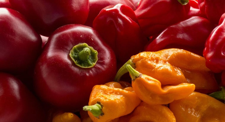 What Is a Peperoncini Pepper?
