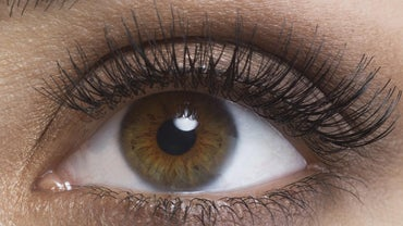 What Percentage of the Population Has Brown Eyes?