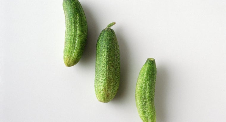 Why Does a Pickle Light a Light Bulb?