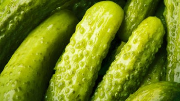 Where Do Pickles Come From?
