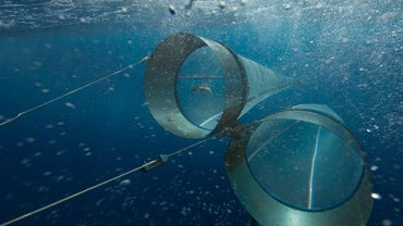 What Is a Plankton Net Used For?