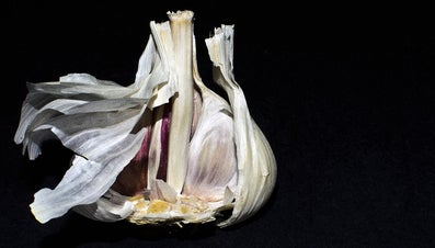 What Is a Pod of Garlic?