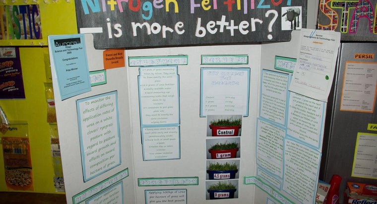What Are Some Popular Fifth Grade Science Project Ideas?