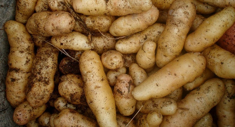 How Does a Potato Produce Electricity?