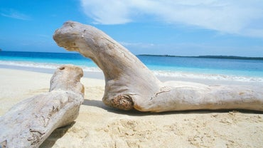 How Do You Preserve Driftwood?