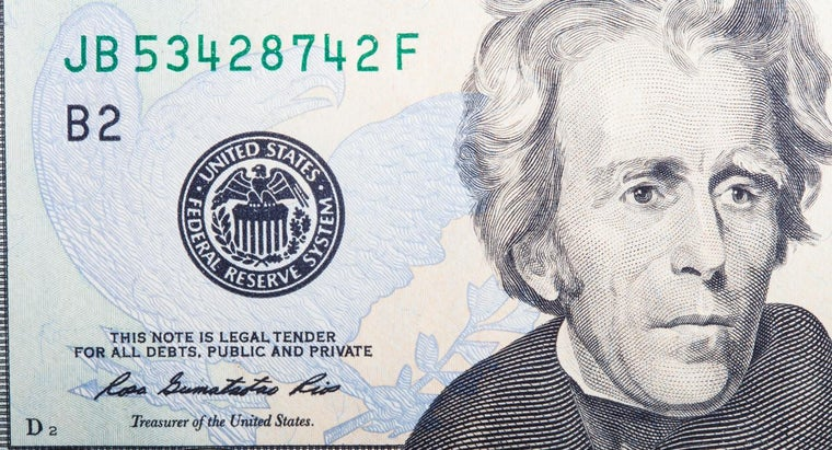 Was President Andrew Jackson a Hero or a Villain?