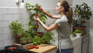What Is the Proper Way to Fertilize Pepper Plants?