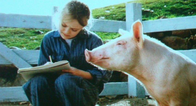 "What Is the Reading Level for ""Charlotte's Web""?"
